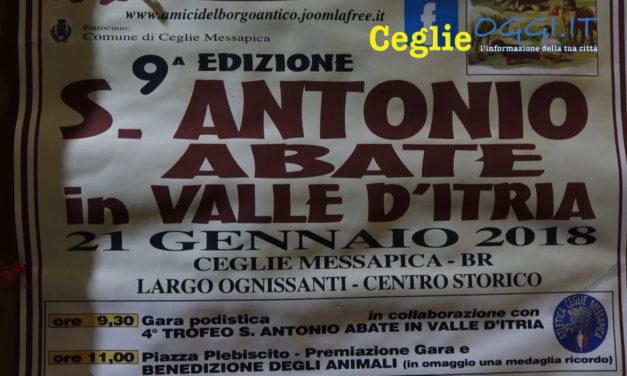 DOMENICA A CEGLIE LA 9^ ED. DELLA FESTA DI S. ANTONIO IN VALLE D'ITRIA